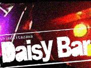 daisybar