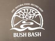 bush_bash