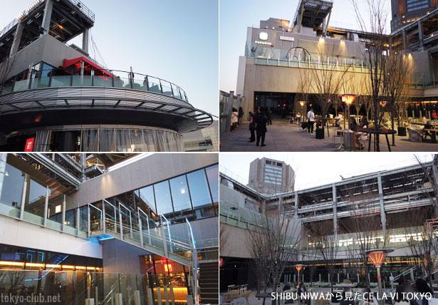 SHIBU NIWAから見たCELAVI TOKYO